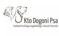 Kto Dogoni Psa